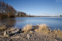 Am Rhein in Meerbusch