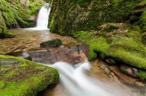 Edelfrauengrab-Wasserfälle Schwarzwald