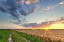 Sonnenuntergang bei Liedberg