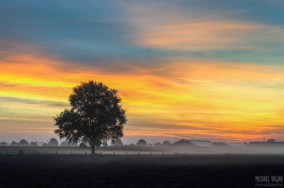 Herbstmorgen am Niederrhein