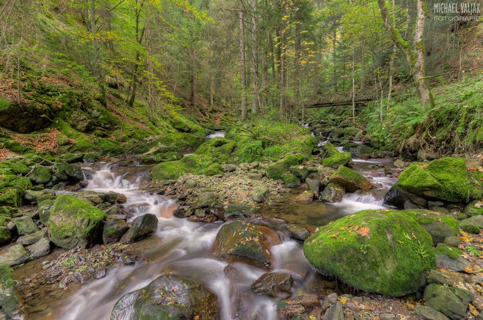 Ravennaschlucht im Schwarzwald