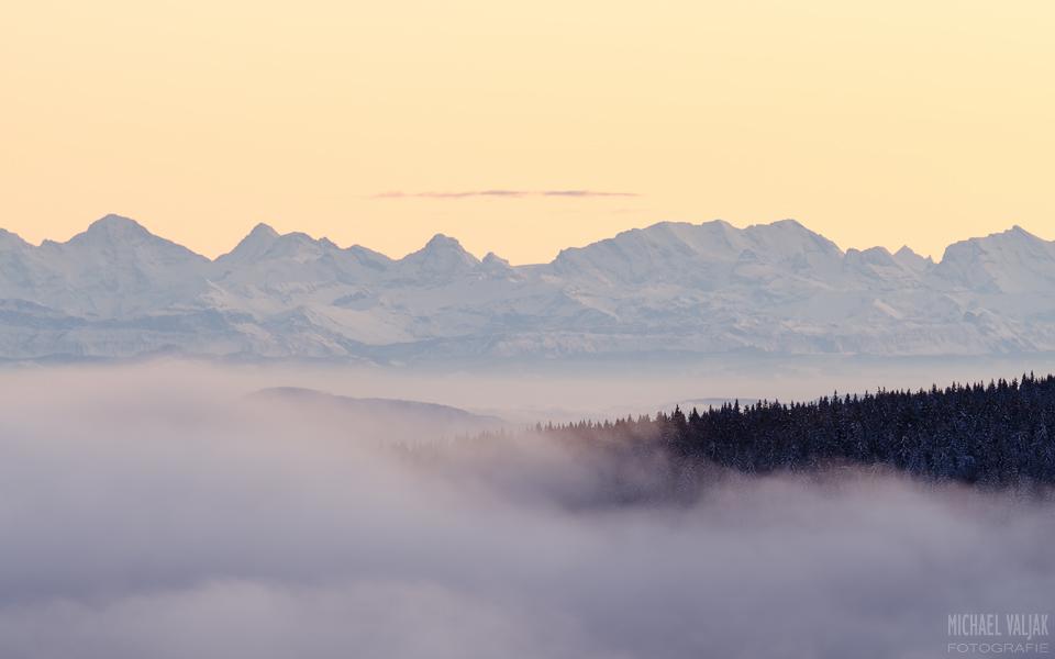 Blick in Richtung Alpen vom Schauinsland