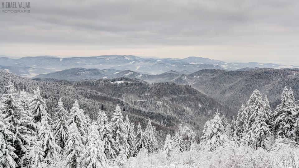 Winterlicher Schwarzwaldblick