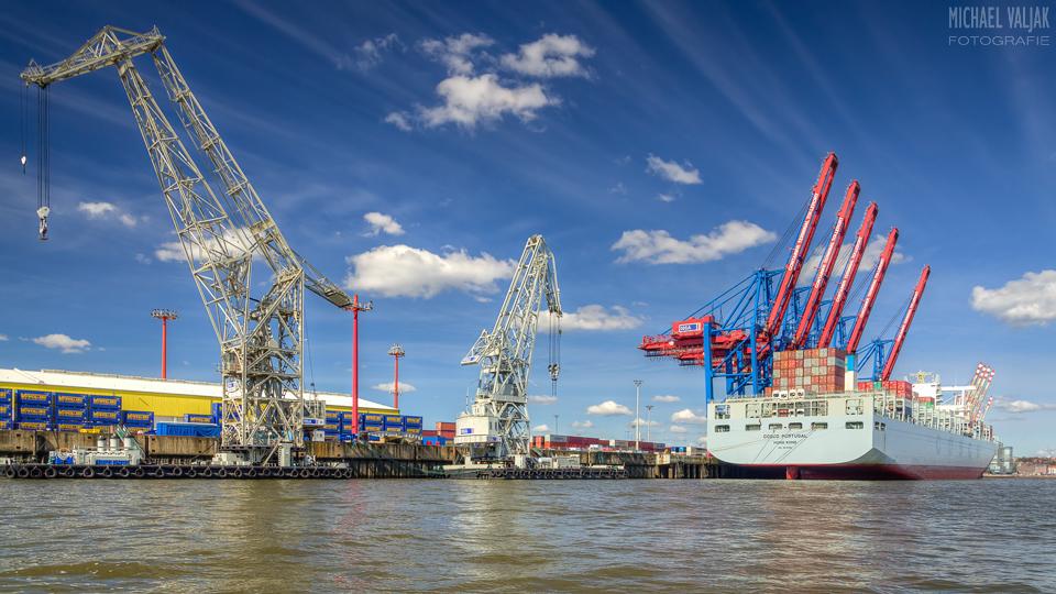 Containerterminal Tollerort im Hamburger Hafen