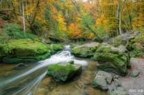 Herbst bei den Irreler Wasserfällen