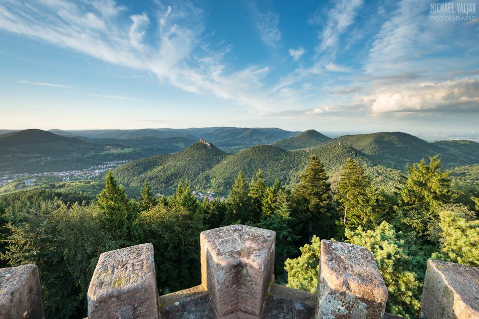 Auf dem Rehbergturm im Pfälzerwald