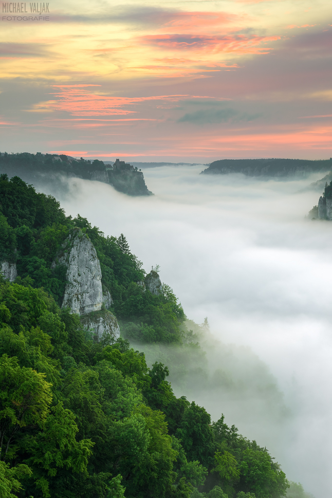 Über dem Nebelmeer im Donautal