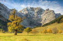 Großer Ahornboden im Herbst