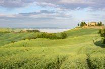 Hügellandschaft Toskana