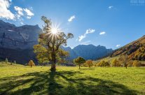 Gegenlicht am Großen Ahornboden im Herbst