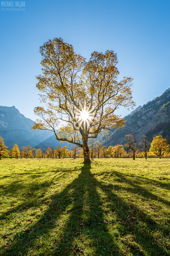 Herbst am Großen Ahornboden