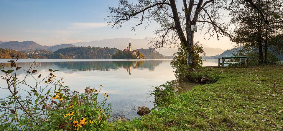 Morgens am Bleder See
