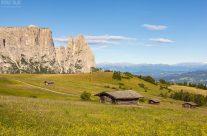 Sommer am Schlern in Südtirol