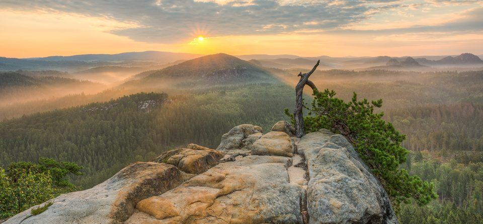Morgens im Elbsandsteingebirge
