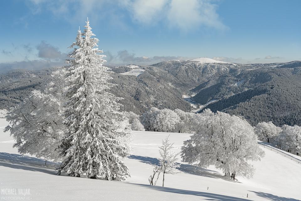 Blick zum Feldberg im Schwarzwald