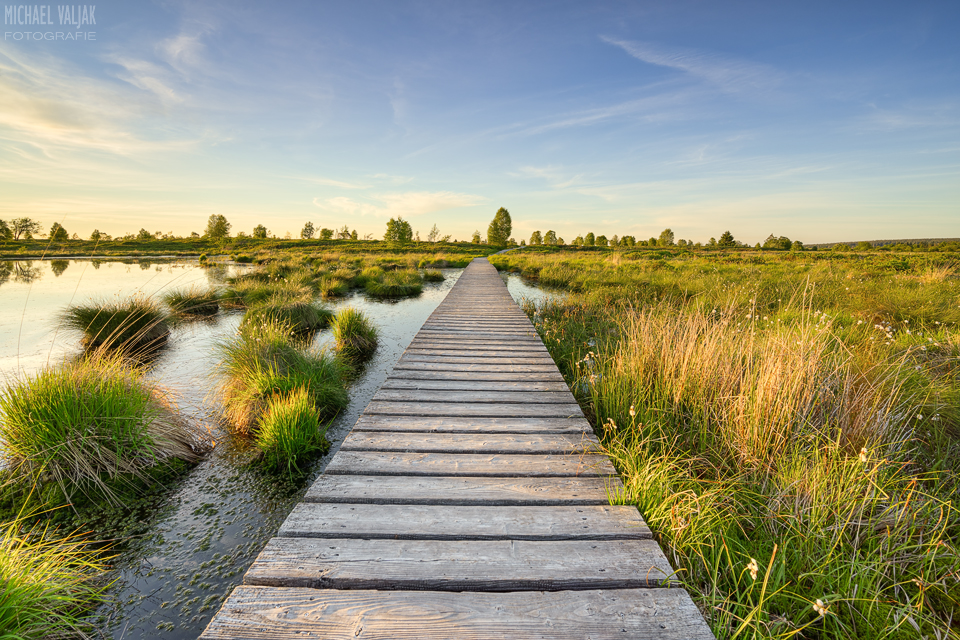 Steg durch das Hohe Venn in Belgien